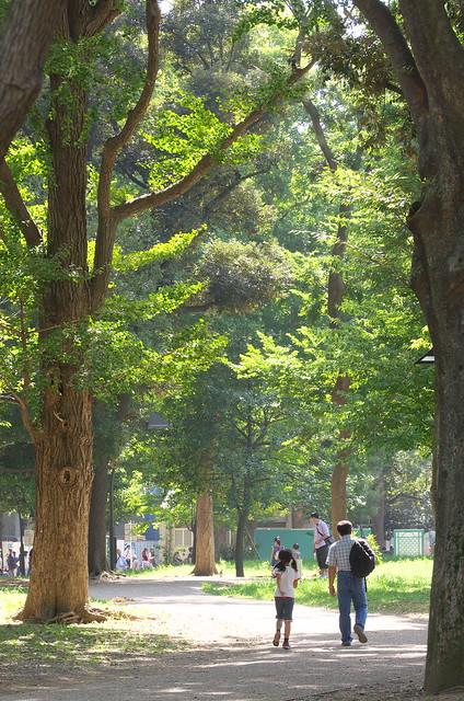 東京路地裏散歩 上野 2014年9月28日