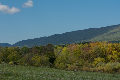mountain field meadow millmontpennsylvania bonniecoatesott