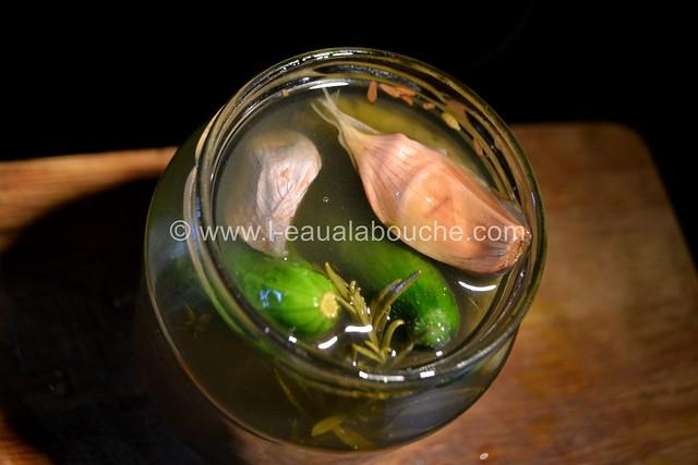 Cornichons en Bocal © Ana Luthi Tous droits réservés 005_GF