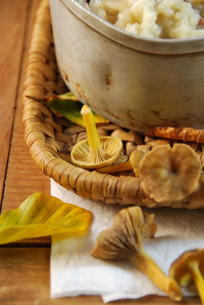 Risotto aux champignons des bois