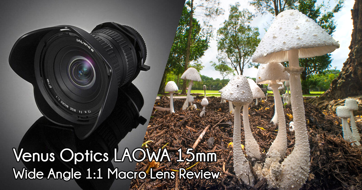 Review of Venus Optics LAOWA 15mm f/4 1:1 Wide Angle Macro Lens