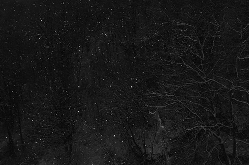 Winternacht #1