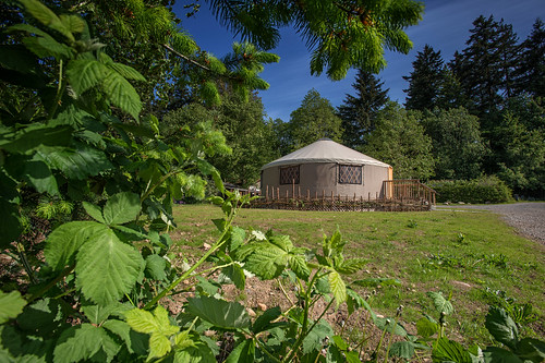 UBC Farm Yurt