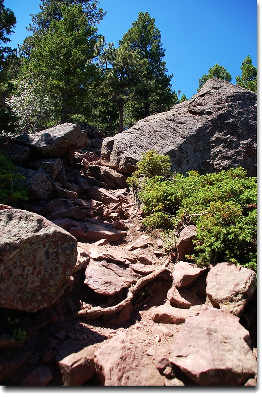 Bear Peak Trail 3