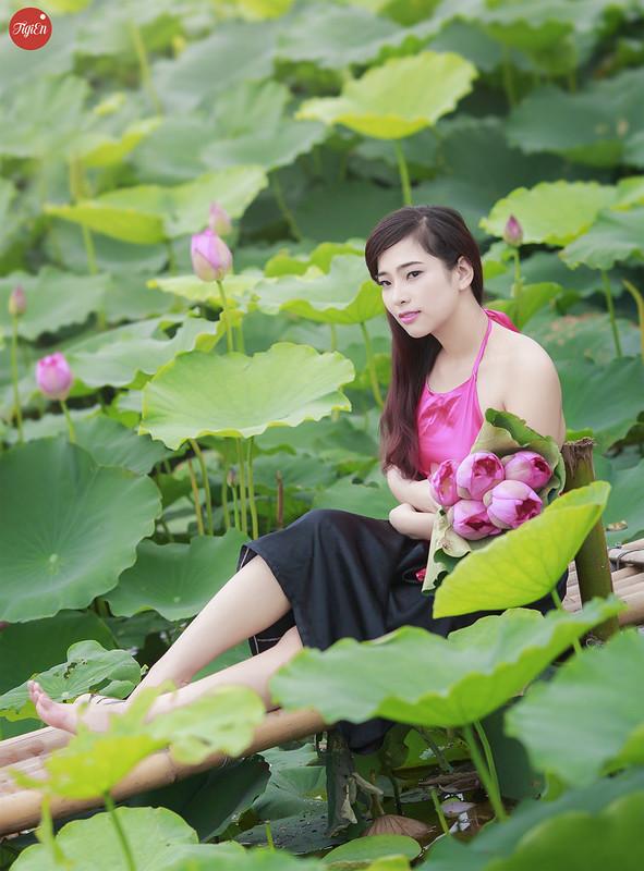Tng Hp Nh Thiu N Bn H Sen  Xinh 16-5711