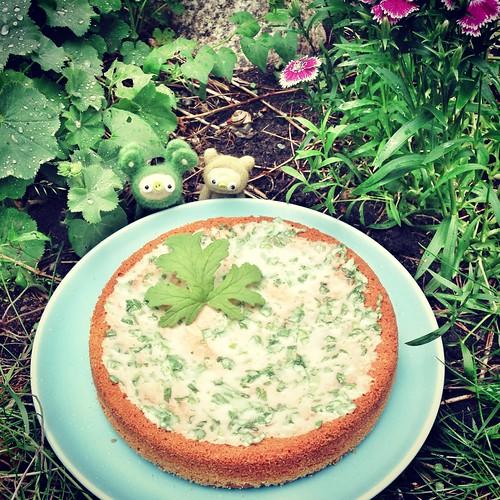 geranium cake