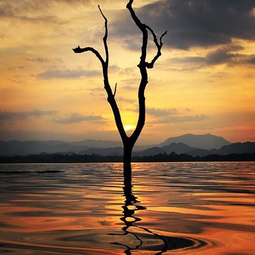 trip sunset holiday square de thailand soleil eau lofi coucher lac thaïlande reflet squareformat crépuscule nuit arbre coucherdesoleil birmanie frontiere sunsettrip iphoneography instagramapp uploaded:by=instagram