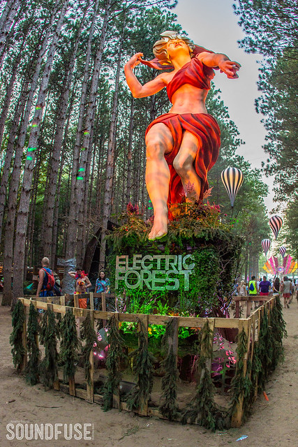 2014 Electric Forest-153