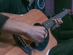 bassist, string instrument, acoustic guitar, guitar, acoustic-electric guitar, string instrument,