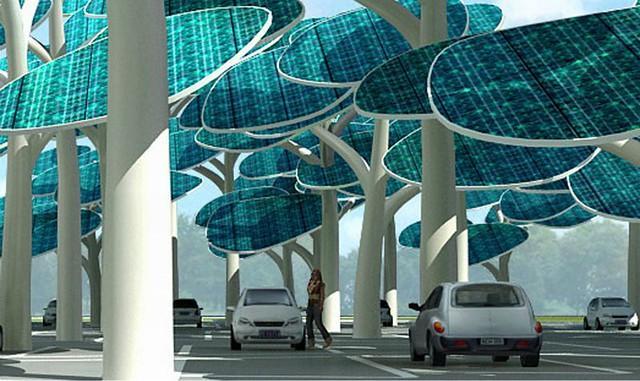 1_solar forest diarioecolgia.jpg