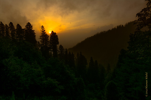 road pakistan wild mountain tree nature clouds sunrise landscape wildlife punjab changlagali tokina1116 nikond7100 abbottabadtehsil