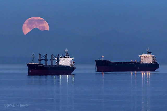 SuperMoon's Last Breath ~ Vancouver, BC