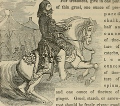 """Image from page 265 of """"The horse and other live stock"""" (1866)"""
