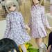 AZONE LS Akihabara_20140810-DSC_9710