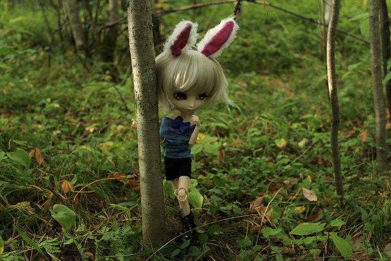 Tree hugging...