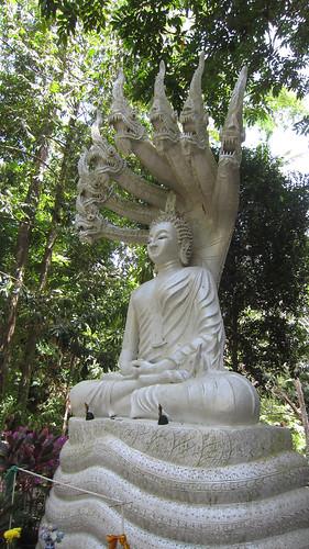 Koh Samui Wat Hinlad