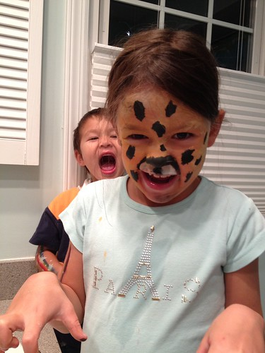 cheetah(s)