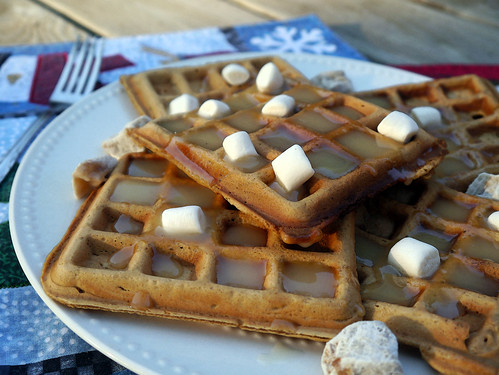 Waffle Wednesday - 'Christmas in September' Gingerbread Waffles (0011)