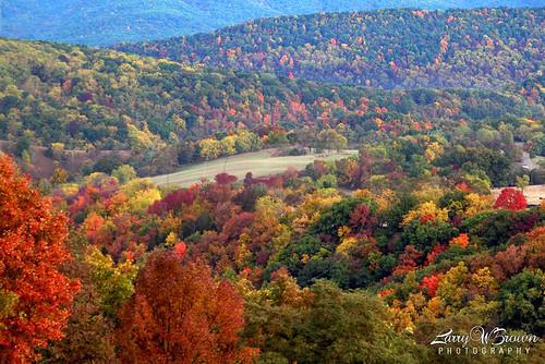 autumn fallcolors autumnleaves fallfoliage foliage westvirginia germanyvalley pendletoncounty