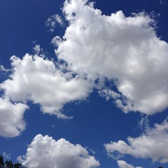 Puffs of white against a blue sky. #texassky