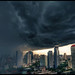 into the rain by ooka medias - 1 Million views : TY !