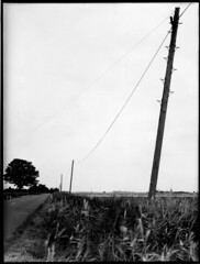 Lines drains and droves - Fenland #4