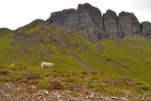 191 - Old man of storr