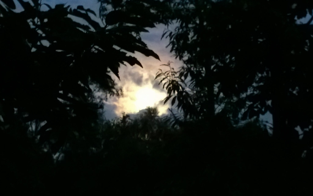 Crap photo of a wonderful moon