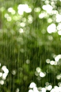 下雨天,圖片來源:Alexander Kavun