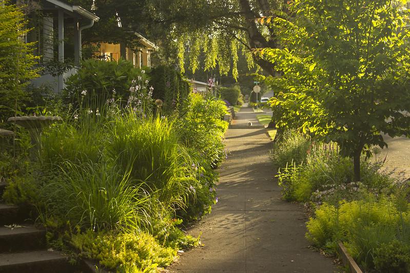 North Garden Sunset h