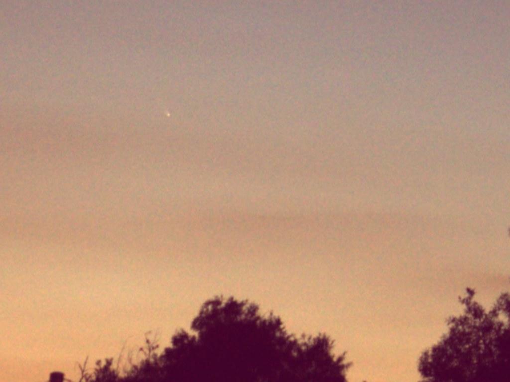 Comet from my backyard