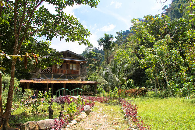Bukit Lawang, Sumatra, Indonesia