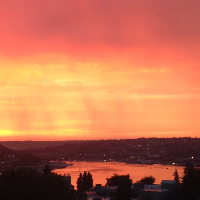 Piling on, but WOW! #seattle #sunset #nofilter