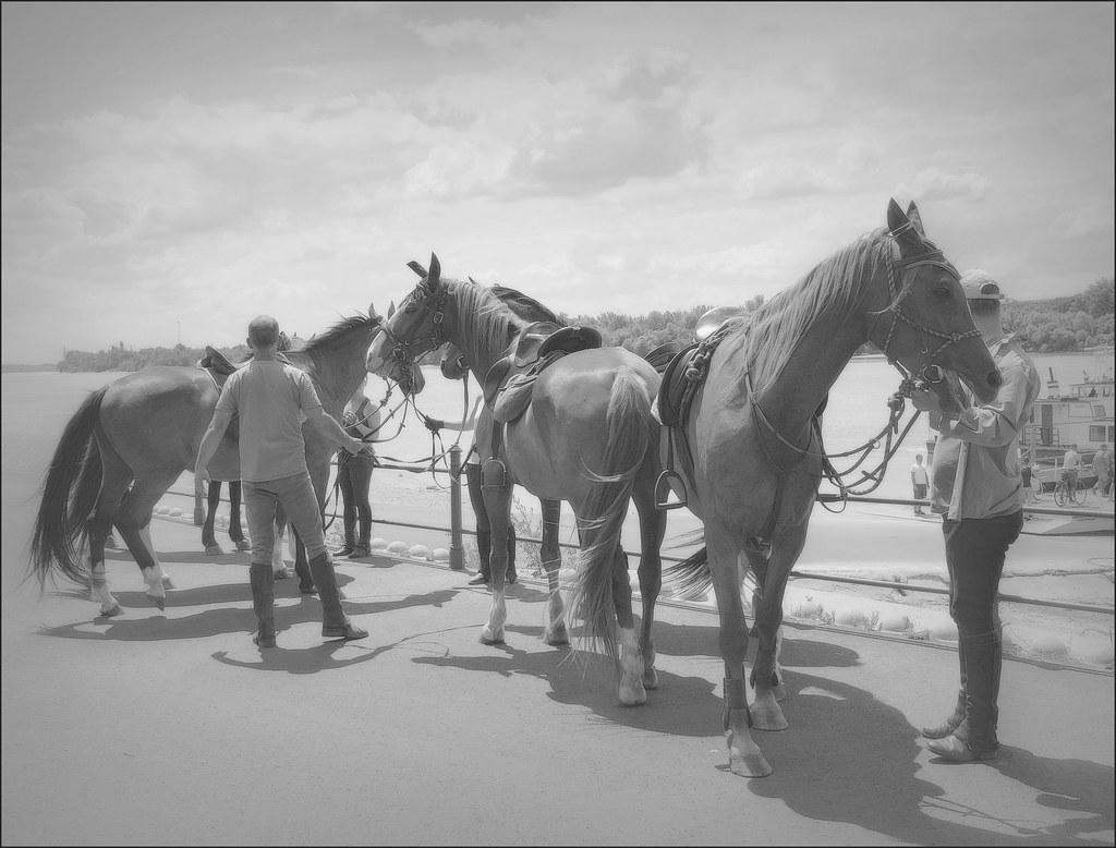 Riders by the Danube, Dunakeszi, Hungary