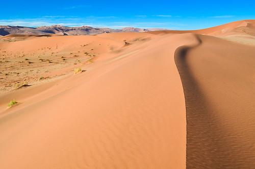 Sable de la Namibie
