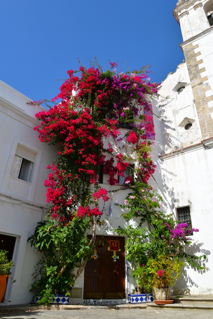 Tarifa-Spain-town-Christine-Cameron-My-Style-Pill15