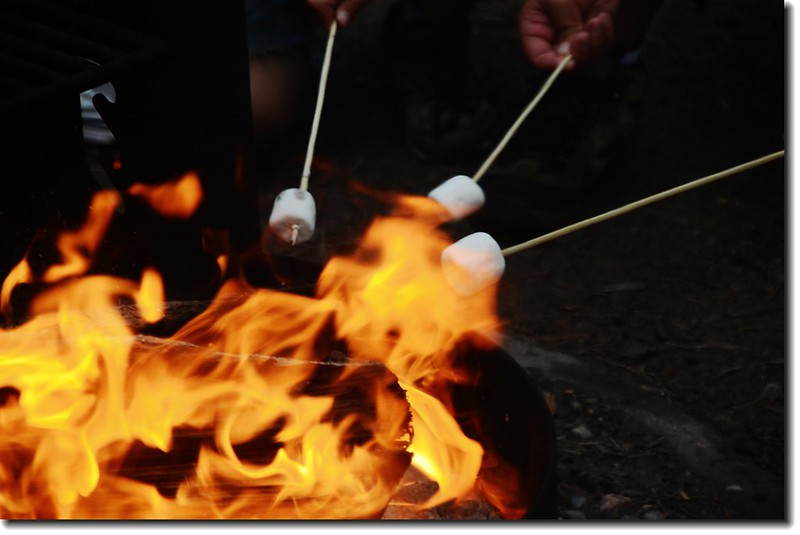 Roasting marshmallows 2