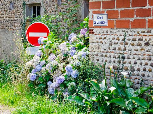 Camino Via Tolosana 552.jpg