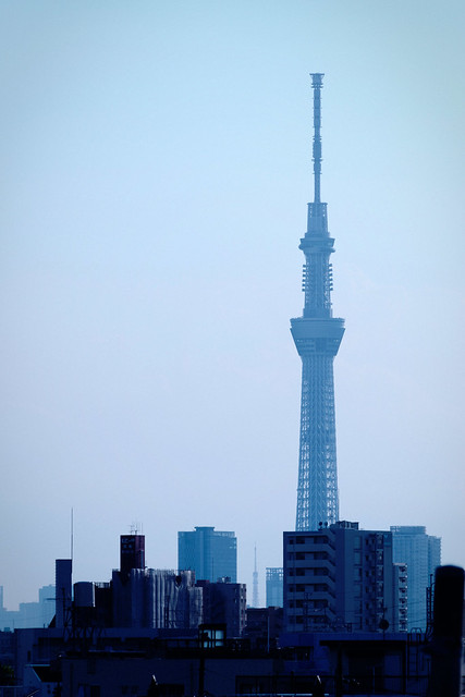 Towers, in Blue Tokyo