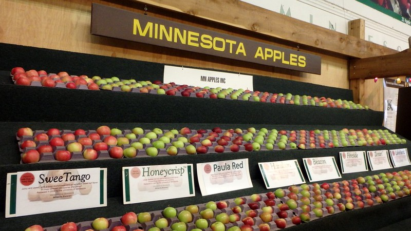 Minnesota apples - SweeTango, Honeycrisp, Paula Red, Haralson, and more