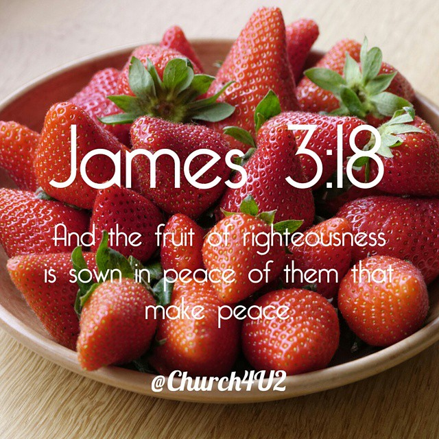 "James 3:18 ""And the fruit of righteousness is sown in peace of them that make peace."" #photooftheday #bibleverse"