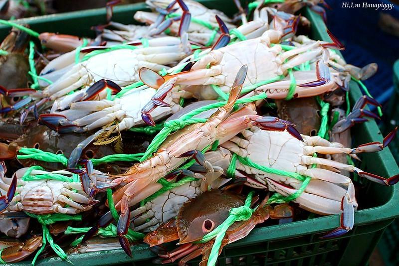 西北萬里蟹 (121)