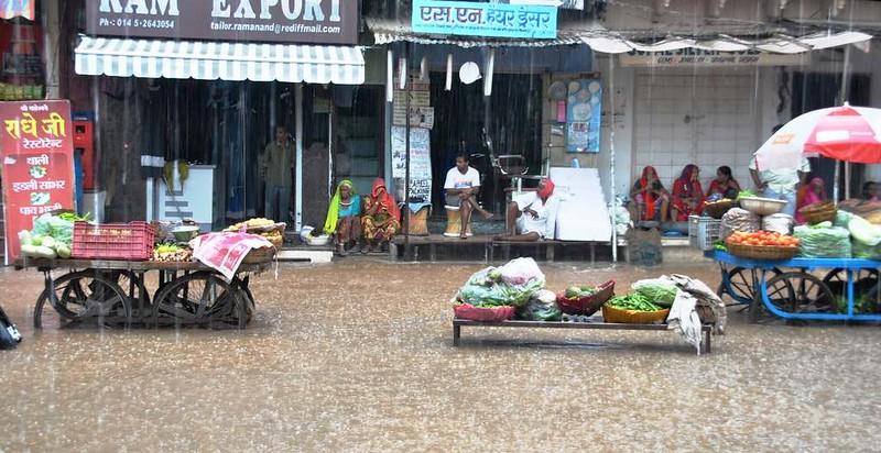 497 Ultimos dias en Pushkar  (13)