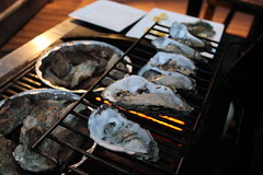 Drake's oysters on the grill