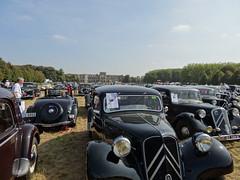 80 Jahre Citroen Traction Avant 2014 La Ferte-Vidame 499