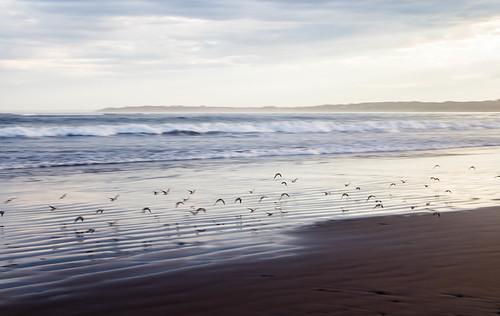 Nice Summer Ocean photos
