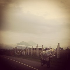 Visitando una de mis regiones favoritas de Guatemala! La tierra del Rajpop Achij Tecum Umam! #xela #quetzaltenango #guatemala #volcano #santamaria #sierramadre #