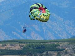 flower(0.0), sailing(0.0), parachute(1.0), sports(1.0), parasailing(1.0), parachuting(1.0), windsports(1.0), extreme sport(1.0),