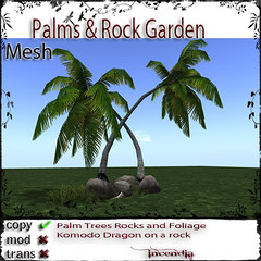 Palms & Rock Garden