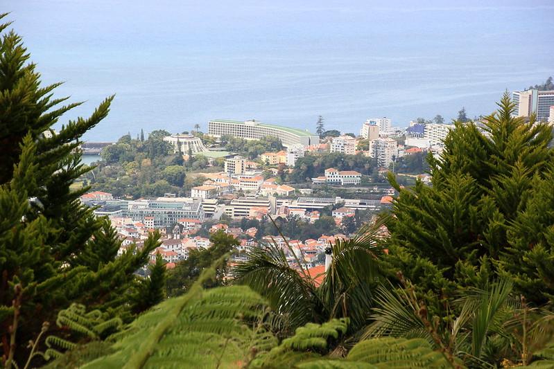 Madeira, Funchal 2014 + ostokset 877